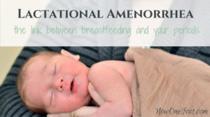 Lactational Amenorrhea - Using breastfeeding to delay your period - Now One Foot